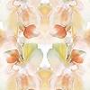 Tapeten: Flower, col.2