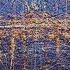Tapeten:  Brandenburger | Bach in Berlin | Ingo Krasenbrink Design