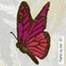 Farfalla, col. 01