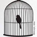 Birdcage, large