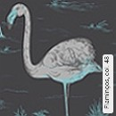Flamingos, col. 48