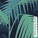 Palm Jungle, col.03