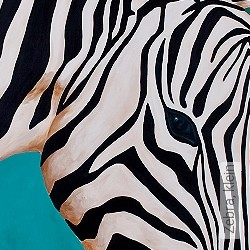 Tapete: Zebra, klein
