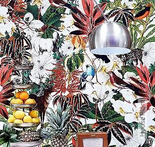 Bild Tapete - House Plant