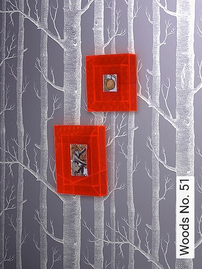 Bild: Tapeten - Woods No. 51