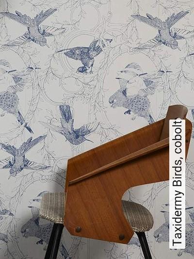 Bild: Tapeten - Taxidermy Birds, cobolt