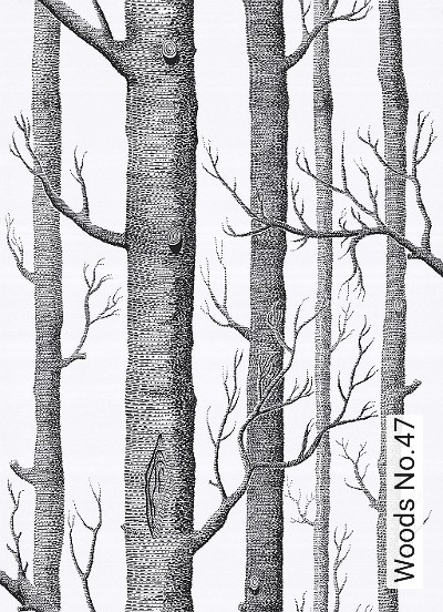 Bild: Tapeten - Woods No.47
