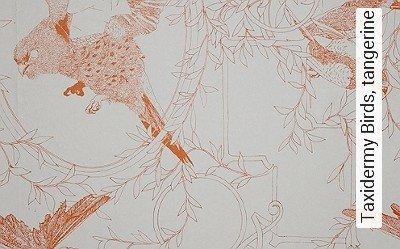 Bild: Tapeten - Taxidermy Birds, tangerine