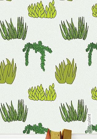 Bild Tapete - Succulent