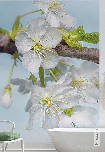 Tapete: Blossom